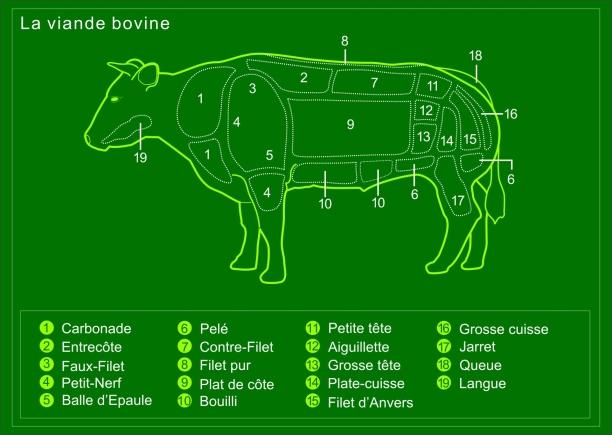 boeuf_decoupe_vert